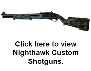 Nighthawk Custom